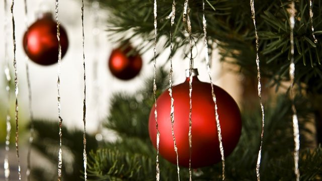 15 wrapped gifts stolen from under Portage family's tree