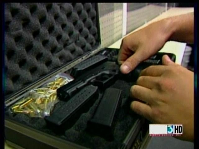 Panel extends temporary concealed carry rules