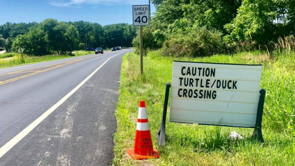 Dane County Humane Society thanks Fitchburg for turtle, duck crossing sign