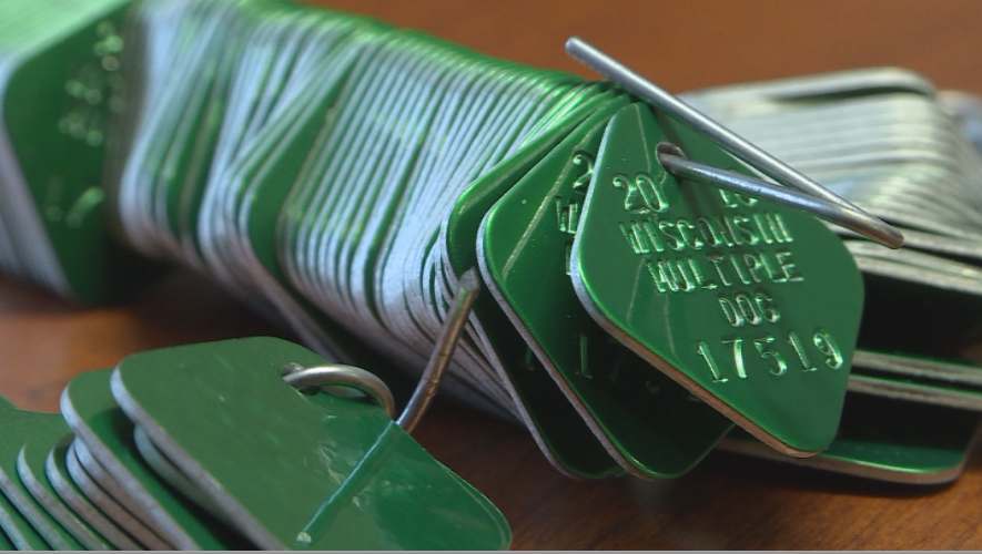 Aluminum tariff effects hit Dane County in the form of dog tags