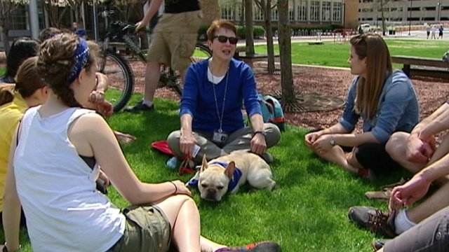 Wagging tails break the stress of UW's finals week