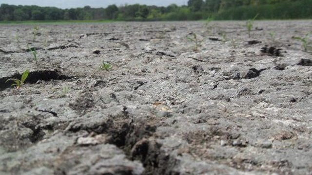 Walker asks for federal drought disaster declaration