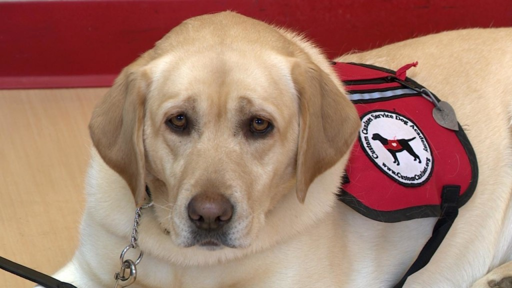 Do Something Good: Local nonprofit lends a helping paw