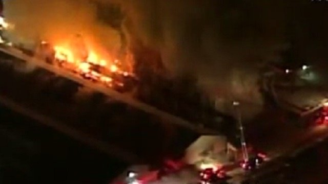 About 300,000 chickens die in egg farm fire