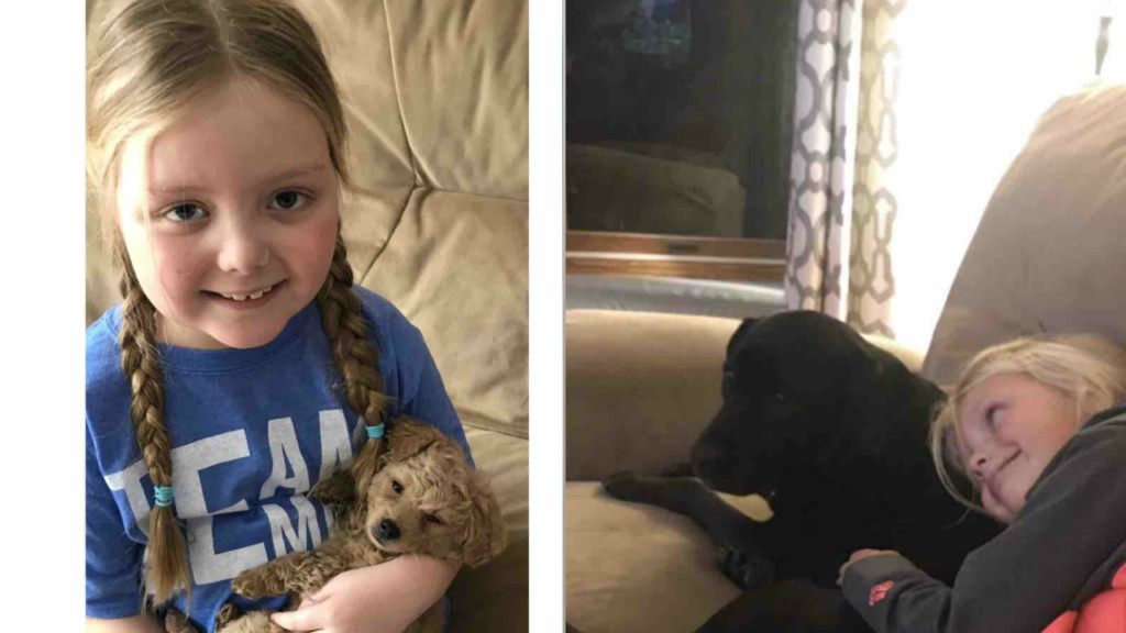 Terminally ill 7-year-old asks for letters from dogs for comfort