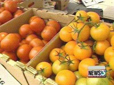 New campus farmers market to start Thursday