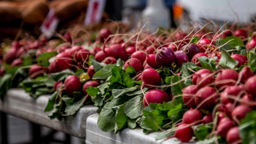 radishes on a table