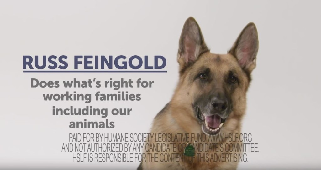 Why a dog endorsed Russ Feingold, and why that's causing problems