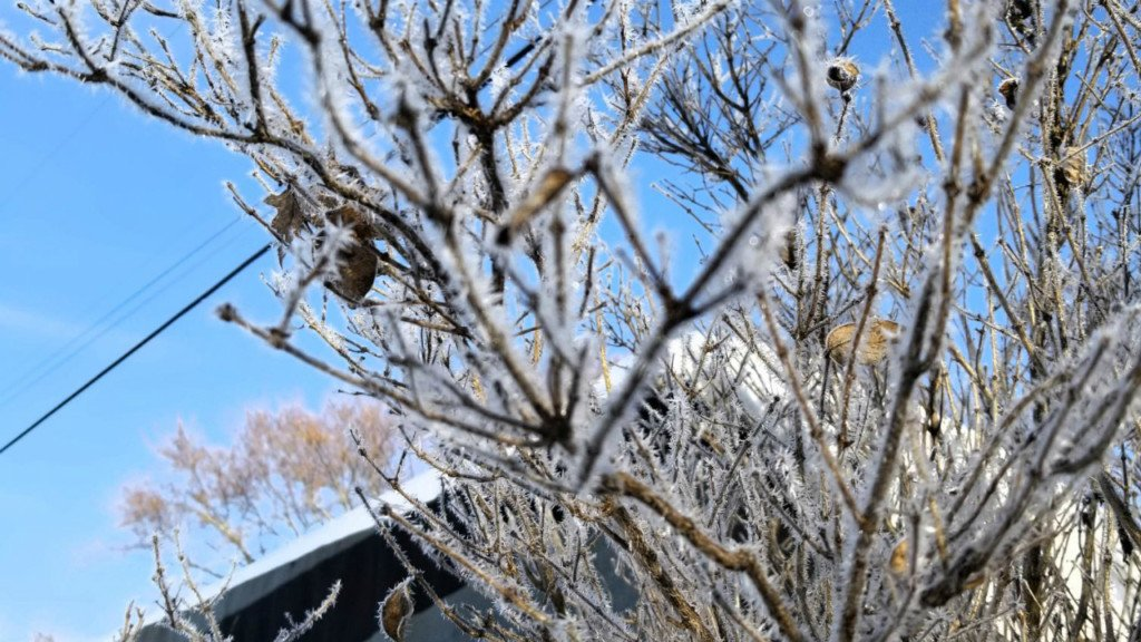 Cold blast keeps Wisconsin temperatures in single digits
