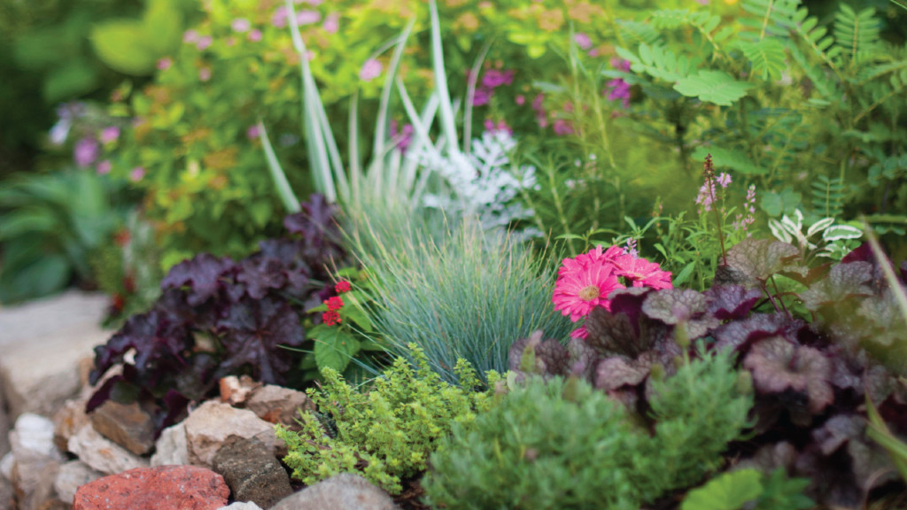 How to plan a small-space garden