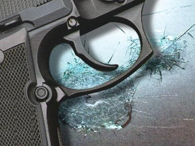 Panel extends Wis. concealed carry rules