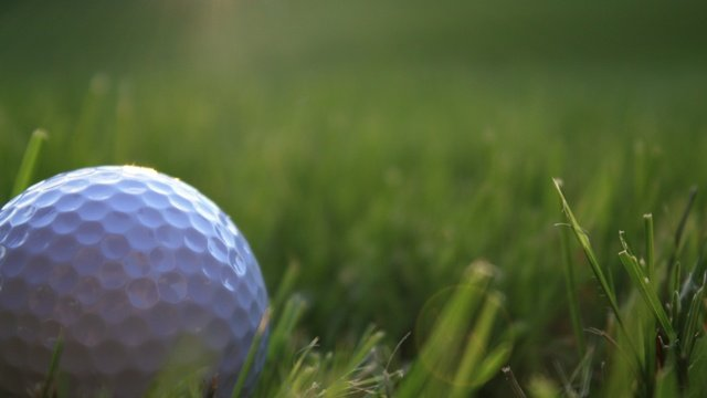 Middleton boys win WPGA Invitational