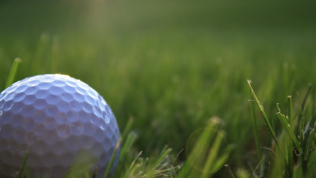 Madison Golf Committee discussing course closures