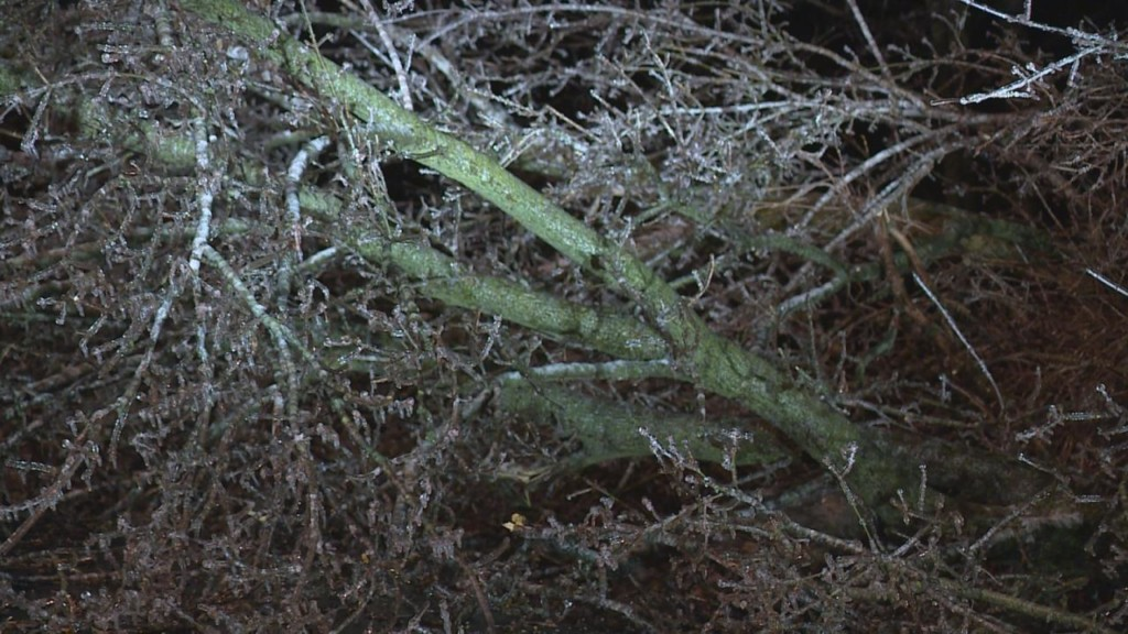 Ice accumulation causes power outages, crashes