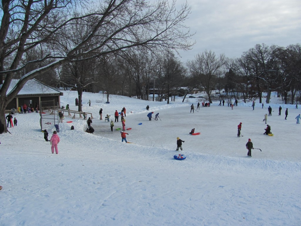 Nine Madison ice rinks could close this year