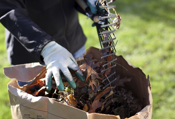 Garden Mulch Tips From Area Experts