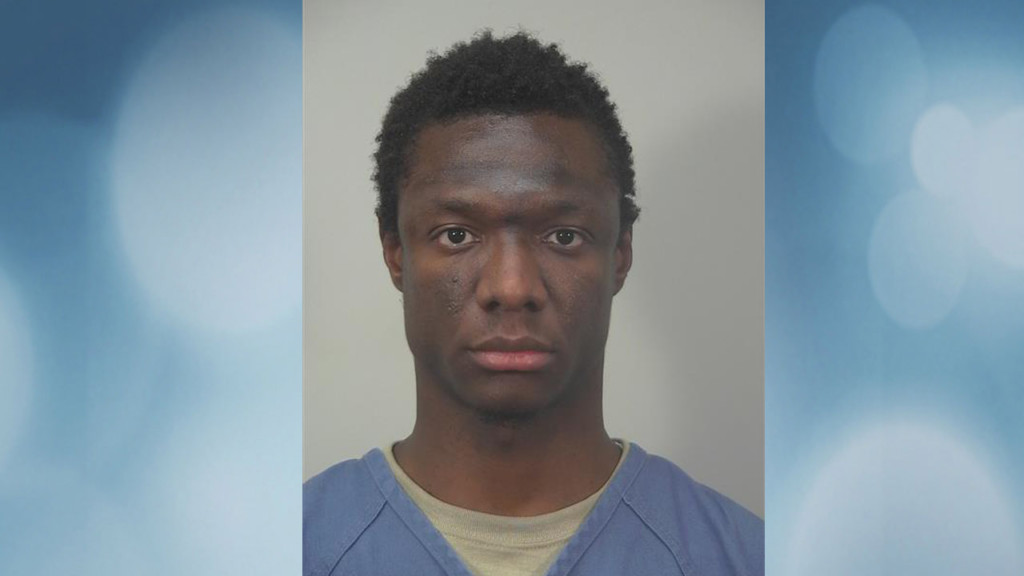 Man arrested after throwing rocks at several people, including pregnant woman, police say