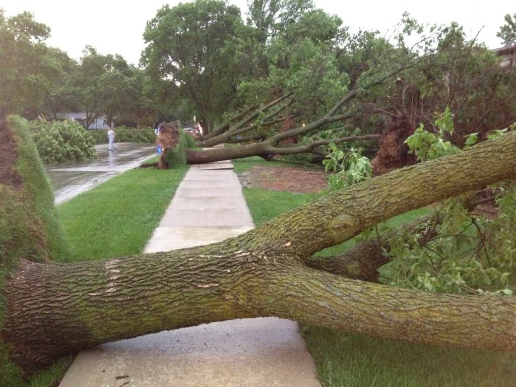 Crews to work overtime cleaning after storm