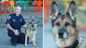 UWPD detective, K-9 retires together after 11 years of service