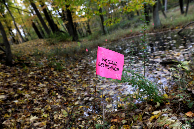 Former DNR employee: Staff pressured to OK  golf course on rare Wisconsin wetlands