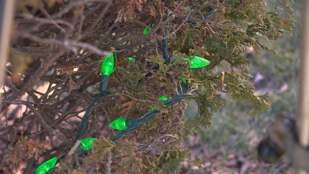 Grinch steals Christmas lights from community display