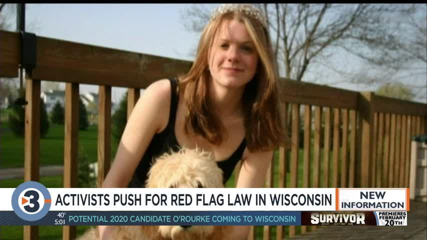 On first anniversary of Parkland shooting, Wisconsin activists call for red flag law