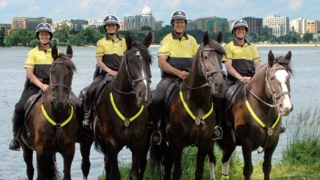 MPD Mounted Unit officially announces newest member