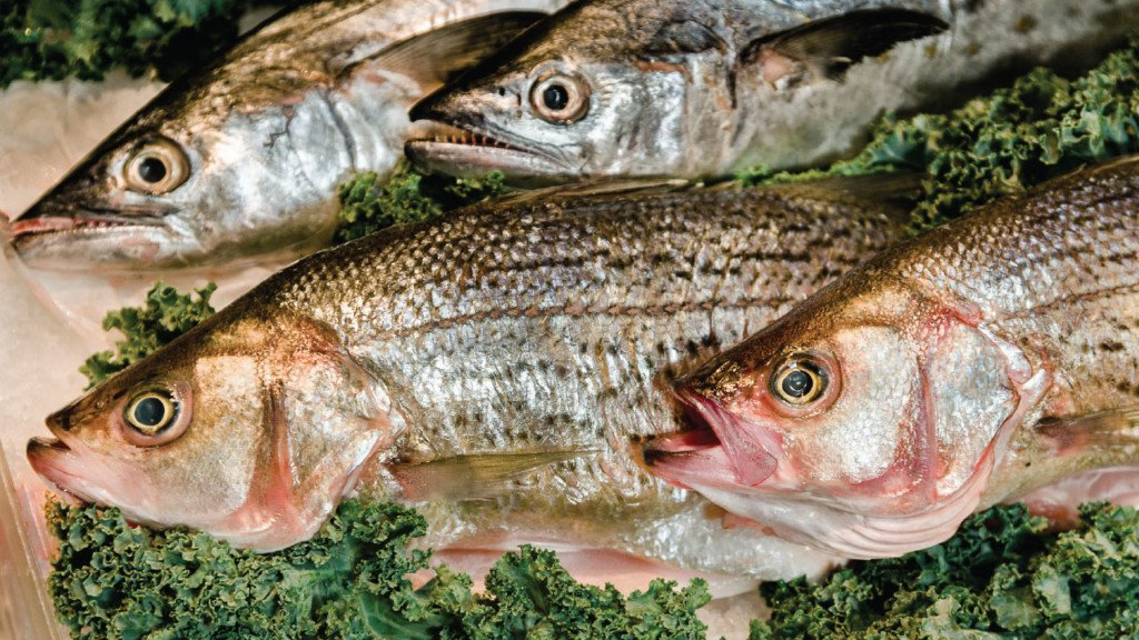10 places to find sustainable seafood