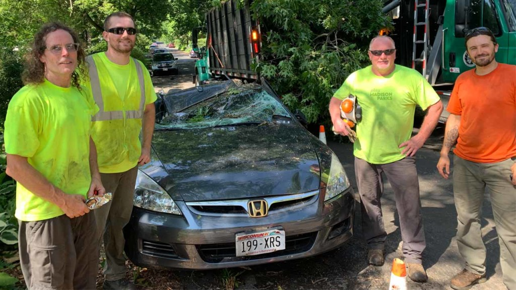 Tree crushes car — happy 4th of July