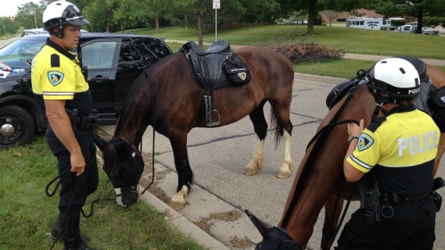 Organization requests Mounted Patrol pony for Christmas