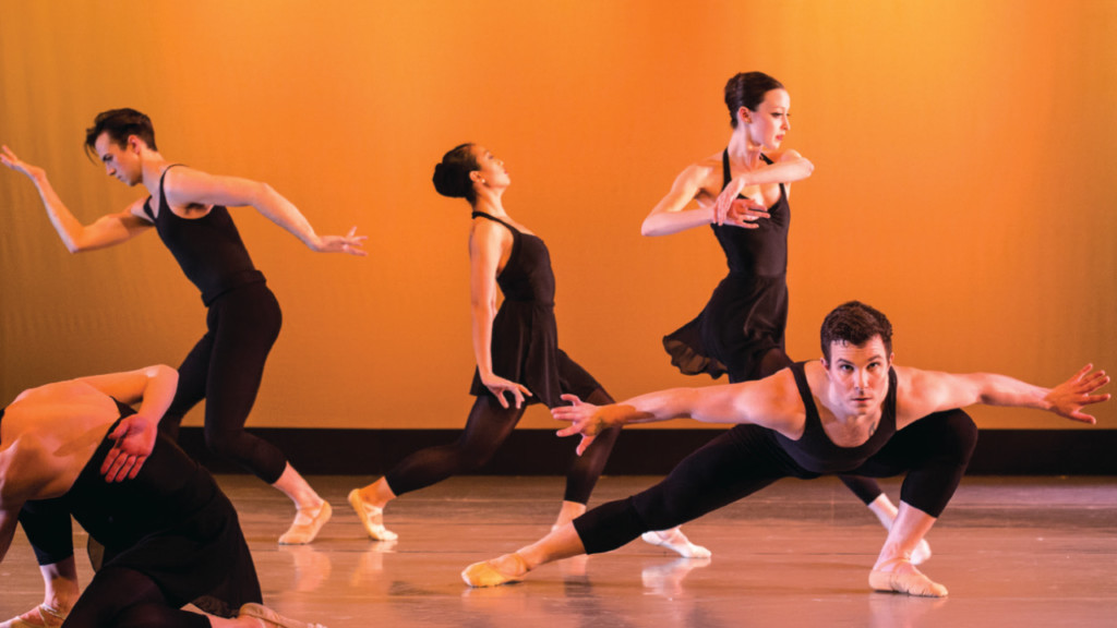 New group Dane Arts Dance Arts to put on show