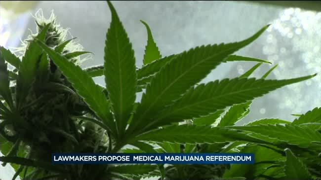 State Assembly approves marijuana extract