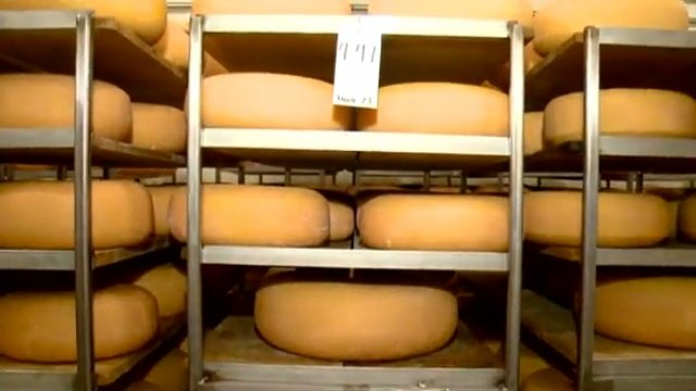 Cheese production suspended over FDA regulation concerns