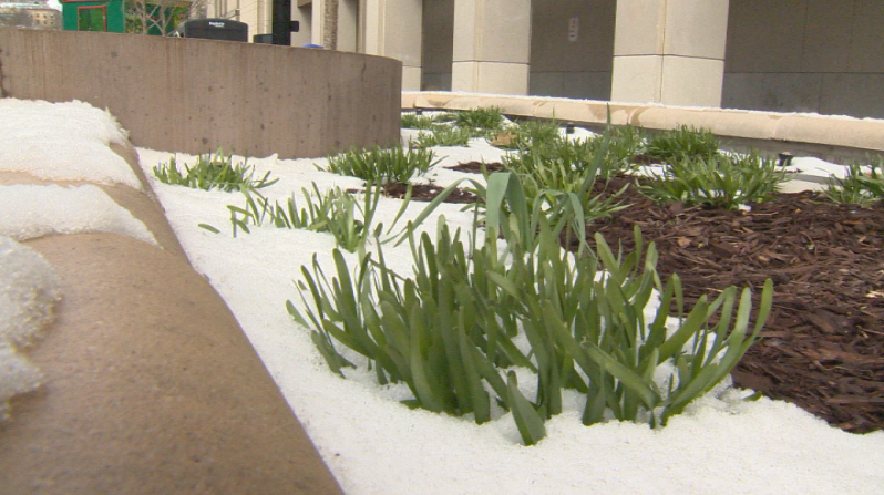 Spring snow showers could affect your happiness