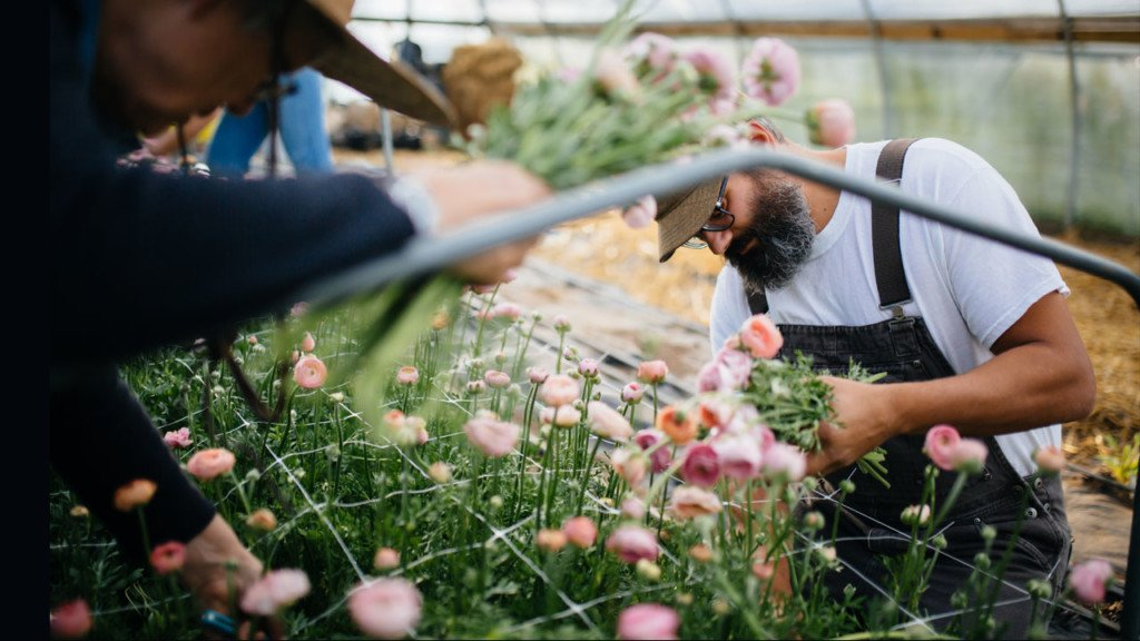 Local blooms abound in Madison area