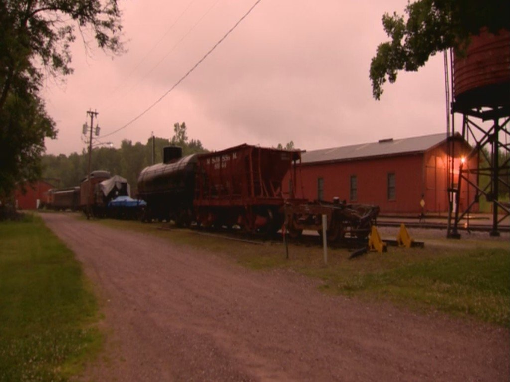 Woman who died after slipping under moving train identified
