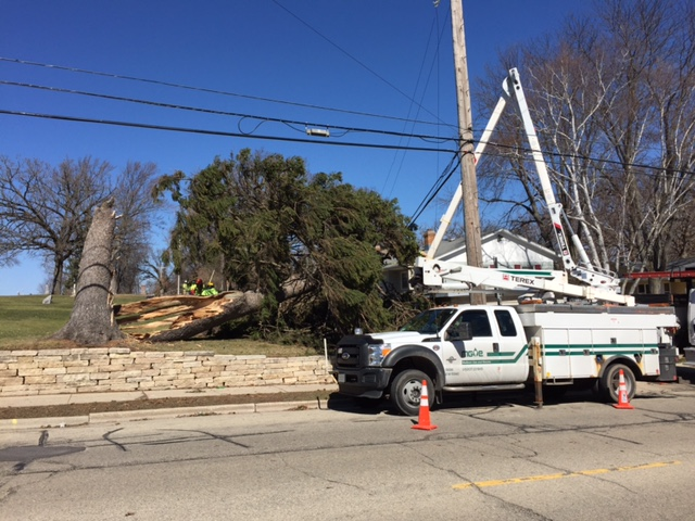 Utility, forestry crews cleaning up tree damage from wind