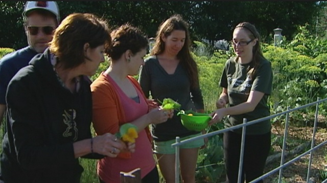 Teachers learn to grow education in garden