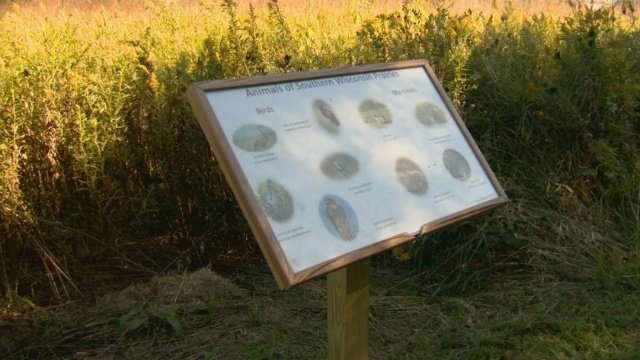 Vandals strike twice at a Verona eagle scout's project