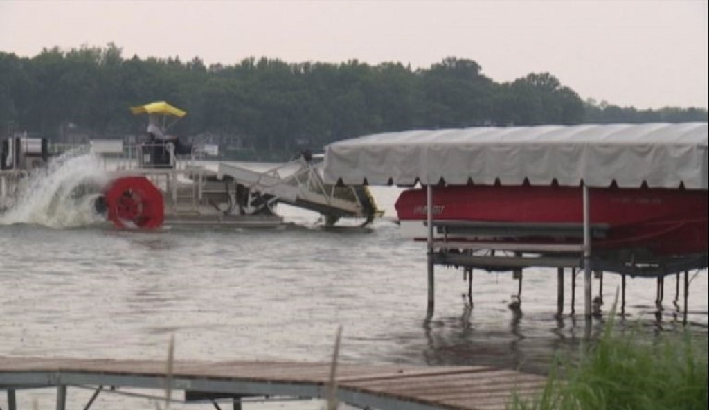 New initiative aims to preserve aquatic life in Madison lake