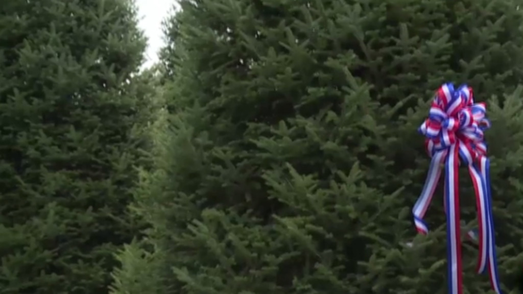White House Christmas tree to be presented by Wisconsin couple