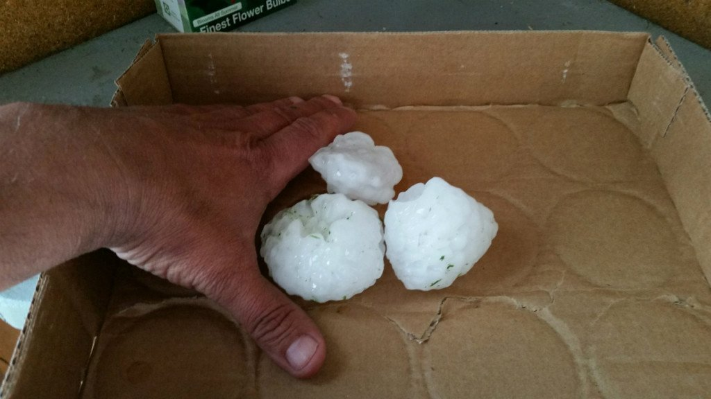 Golf-ball sized hail falls in Windsor, DeForest area