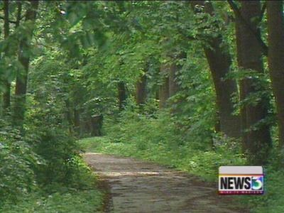 DNR officials propose state forest upgrades
