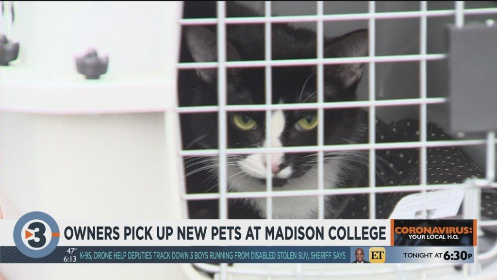 Owners Pick Up New Pets At Madison College