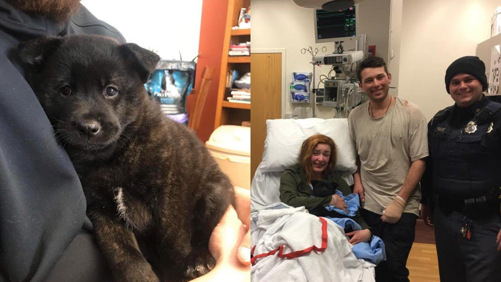 A puppy is reunited with its owners at a local hospital