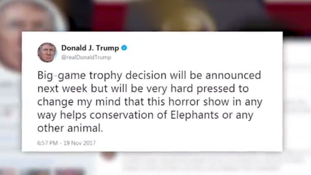 Trump: Administration will announce big-game trophy decision next week