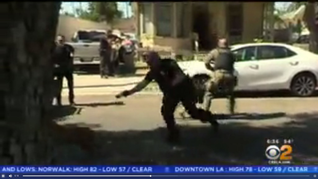 Caught on video: Police K-9 attacked by pit bull
