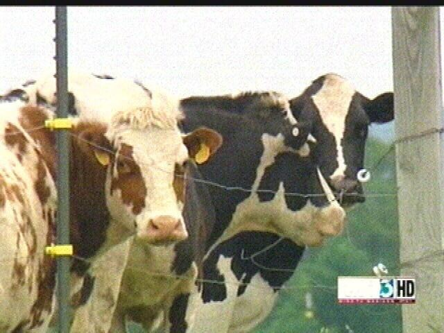 USDA, dairy industry renew greenhouse gas deal