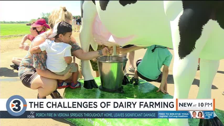 Dairy farmer shares challenging times