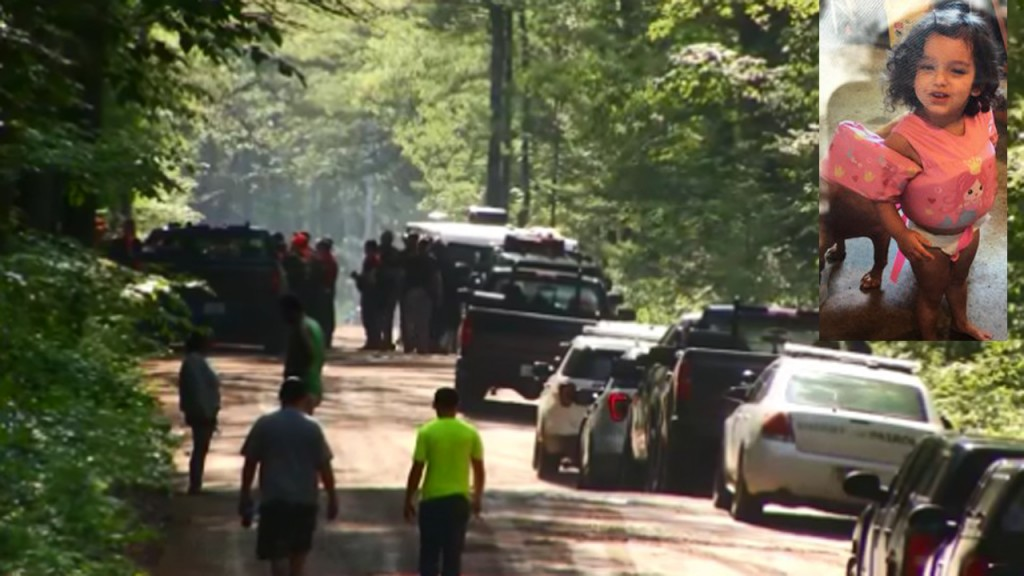 PHOTOS: Toddler who disappeared in Michigan woods found safe
